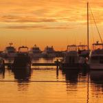 Abogados especialistas en Tasas portuarias – Reclamación