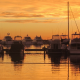 tasas portuarias reclamar abogadas