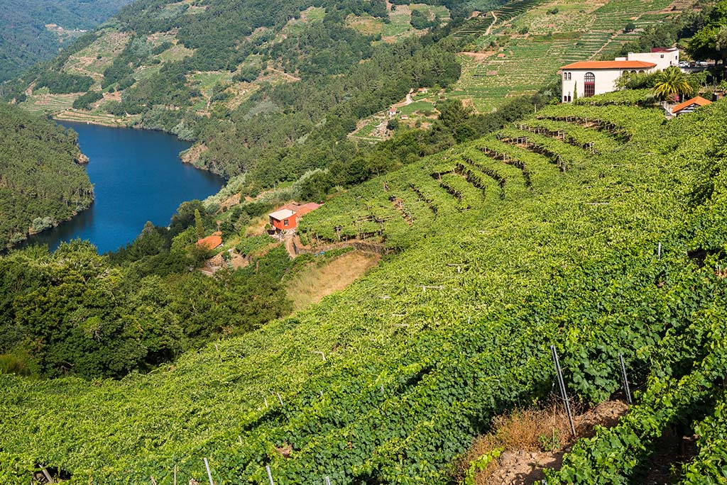 Galicia permite construir en suelo rústico